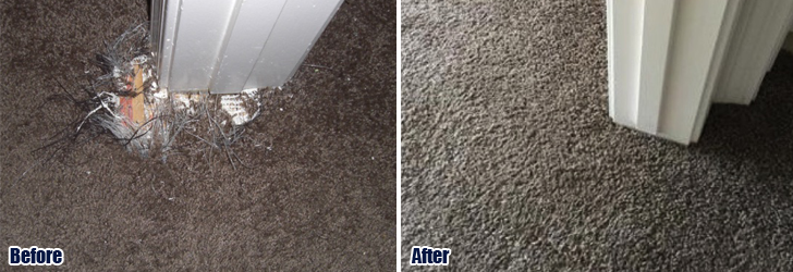 Pet Damaged Carpet Repair Calabasas CA