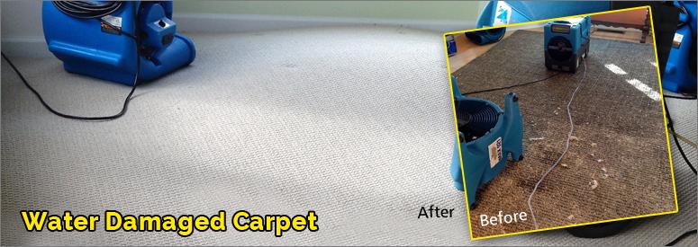 Water Damage Carpet Calabasas